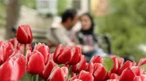 ملاک های ازدواج موفق از دیدگاه دکتر فرهنگ هلاکویی (قسمت چهارم)